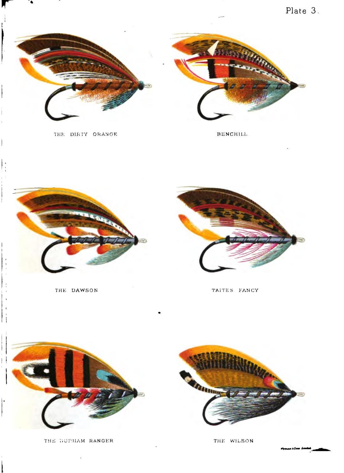 salmonflyhowtod00kelsgoog_0151