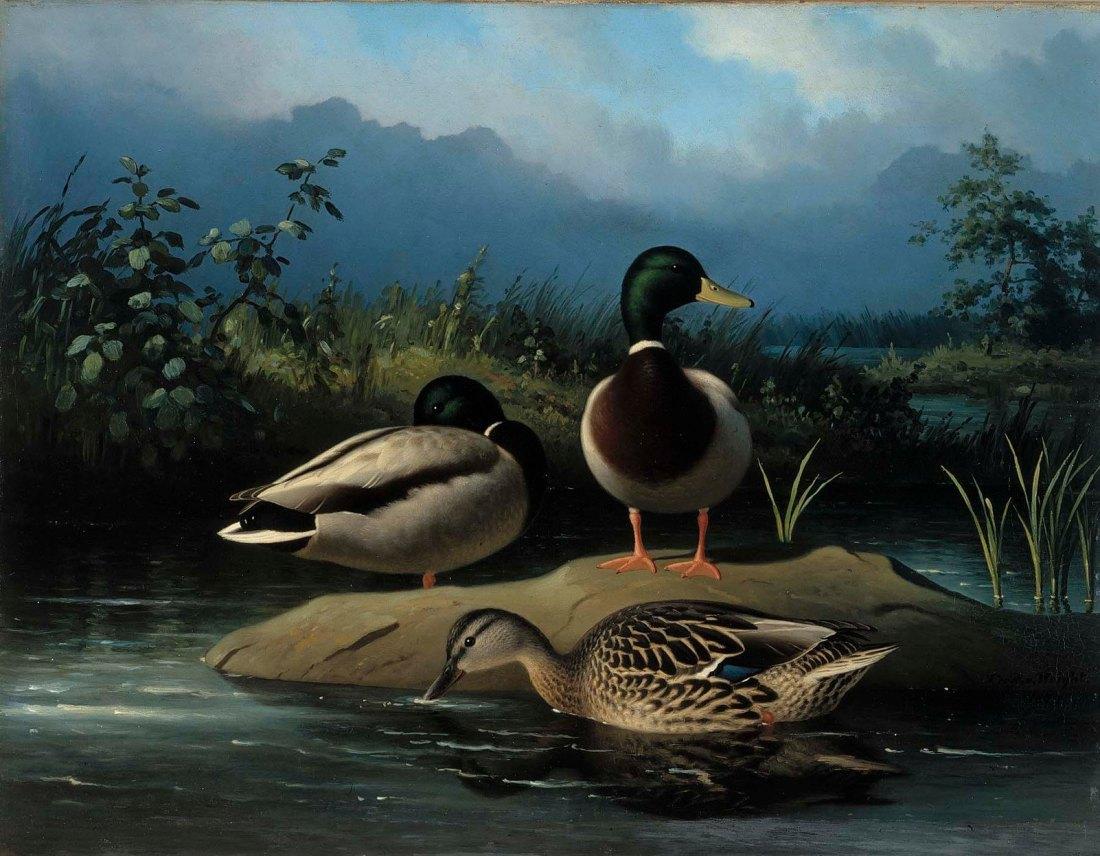 Ferdinand_von_Wright_-_Mallards_-_A-2002-608_-_Finnish_National_Gallery