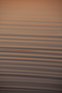 Abstract Ripples3