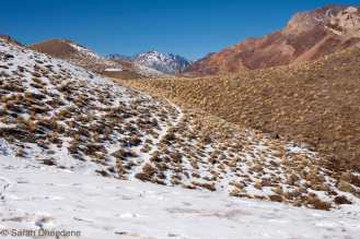 A walk to the Aconcagua