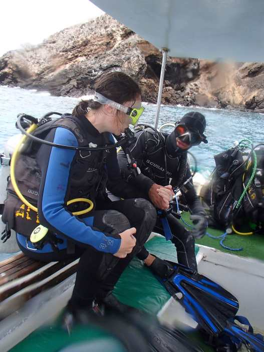 Diving @ Floreana - Pictures from the agency