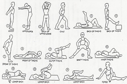 TONI PROFE: Stretching