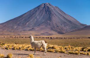 Atacama-1_preview