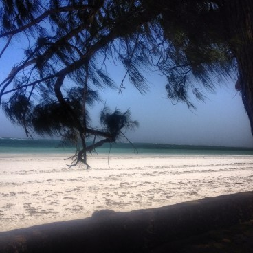 Diani Beach, Mombasa and the Indian Ocean