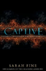 Book Cover: Captive