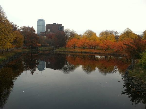 Photo Nov 10 8 47 21 AM
