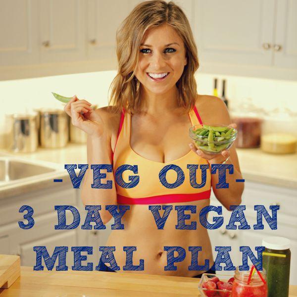 Newsletter Vegan Meal Plan Picture