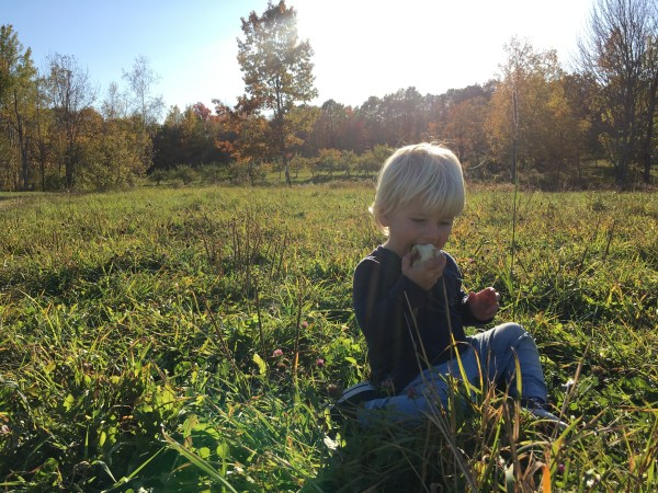 tommy eating an apple hope orchard
