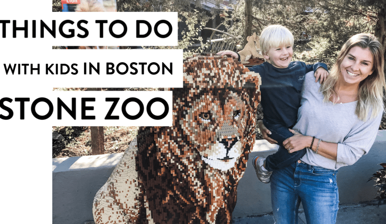 Brick Safari and The Stone Zoo | Boston Kid Things To Do