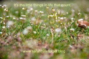 sarah hale folger little things - Sarah Hale Folger. little things