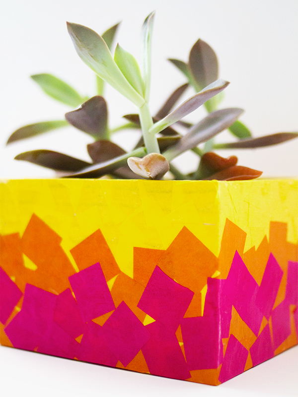DIY Tissue Paper Planter Box | Sarah Hearts