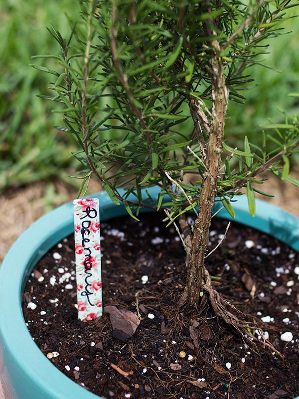 DIY Washi Tape Garden Markers | Sarah Hearts
