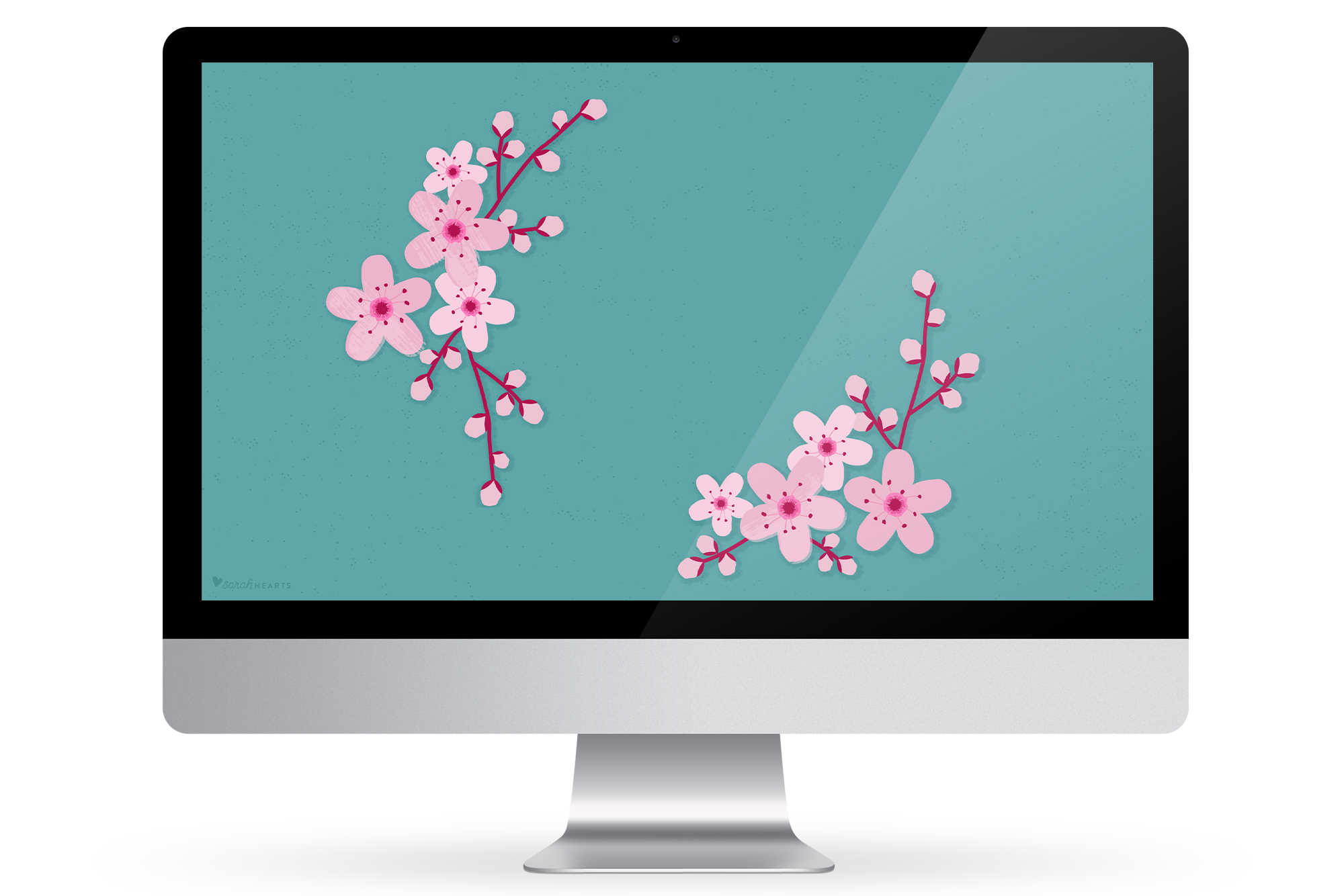 Add some beauty to your computer, phone or tablet with this free cherry blossom wallpaper!