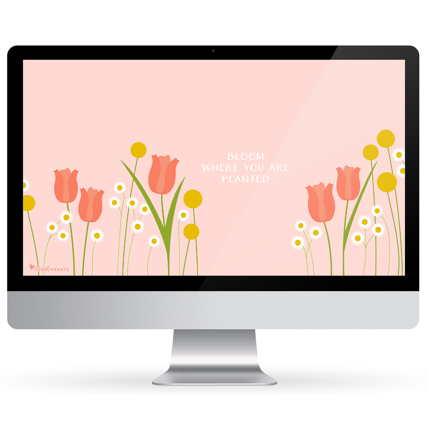 Add beautiful spring flowers to your computer, phone and tablet with this inspiring free wallpaper.