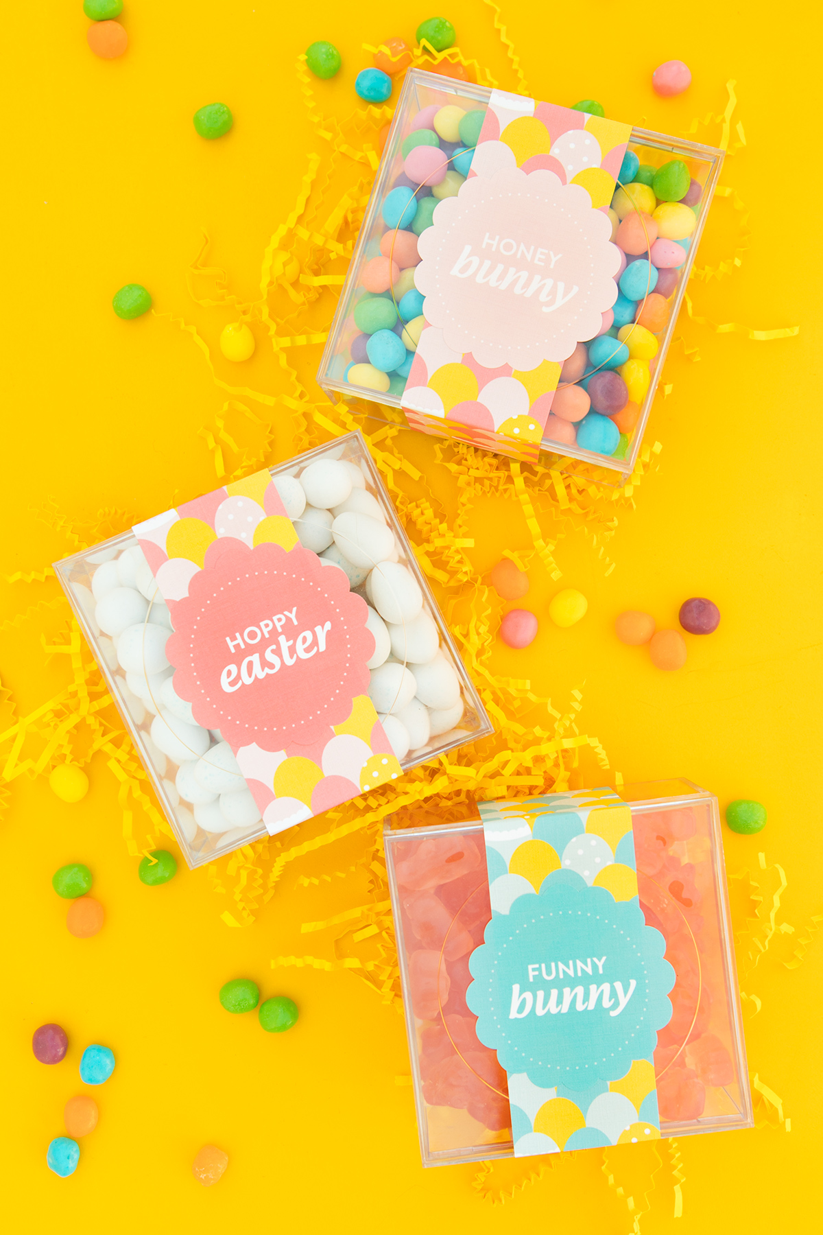 picture about Easter Labels Printable named Printable Easter Sweet Box Labels - Sarah Hearts