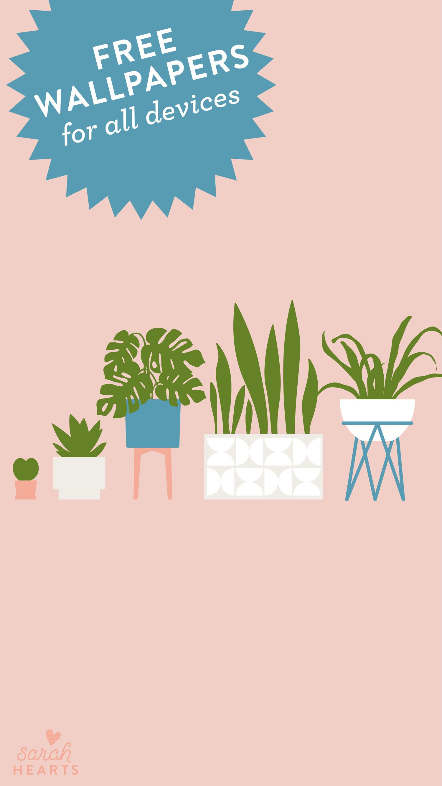 House Plant August 2019 Calendar Wallpaper Sarah Hearts
