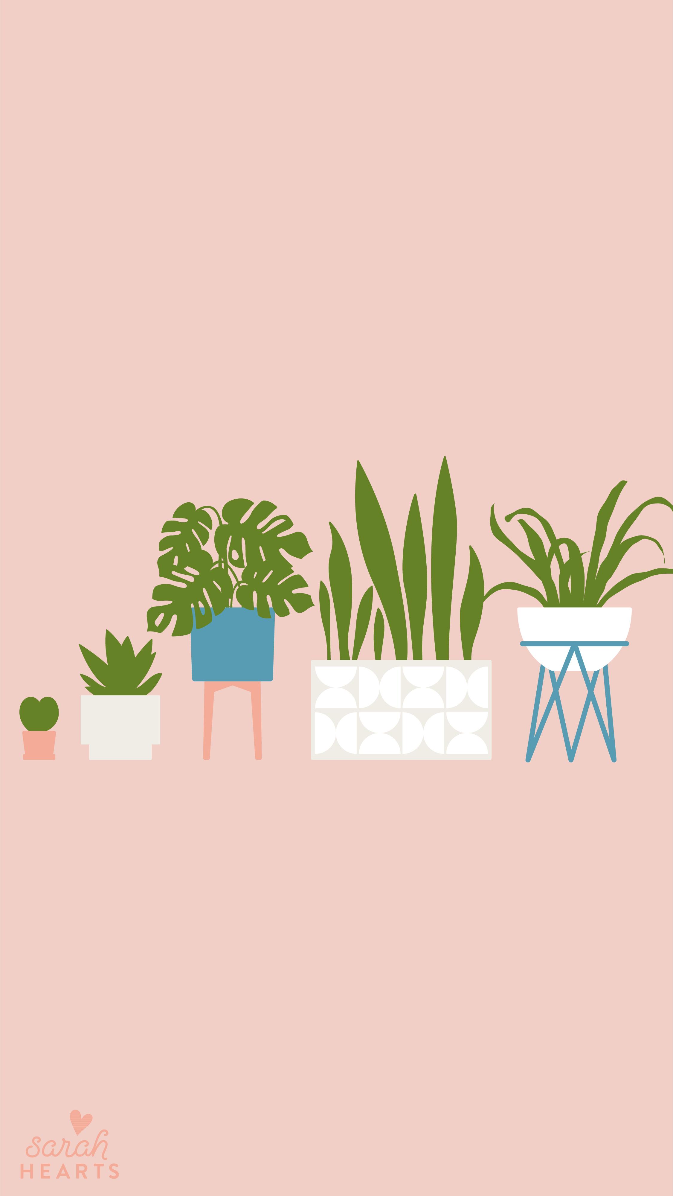 Minimalist Quote Wallpaper House Plant August 2019 Calendar Wallpaper Sarah Hearts