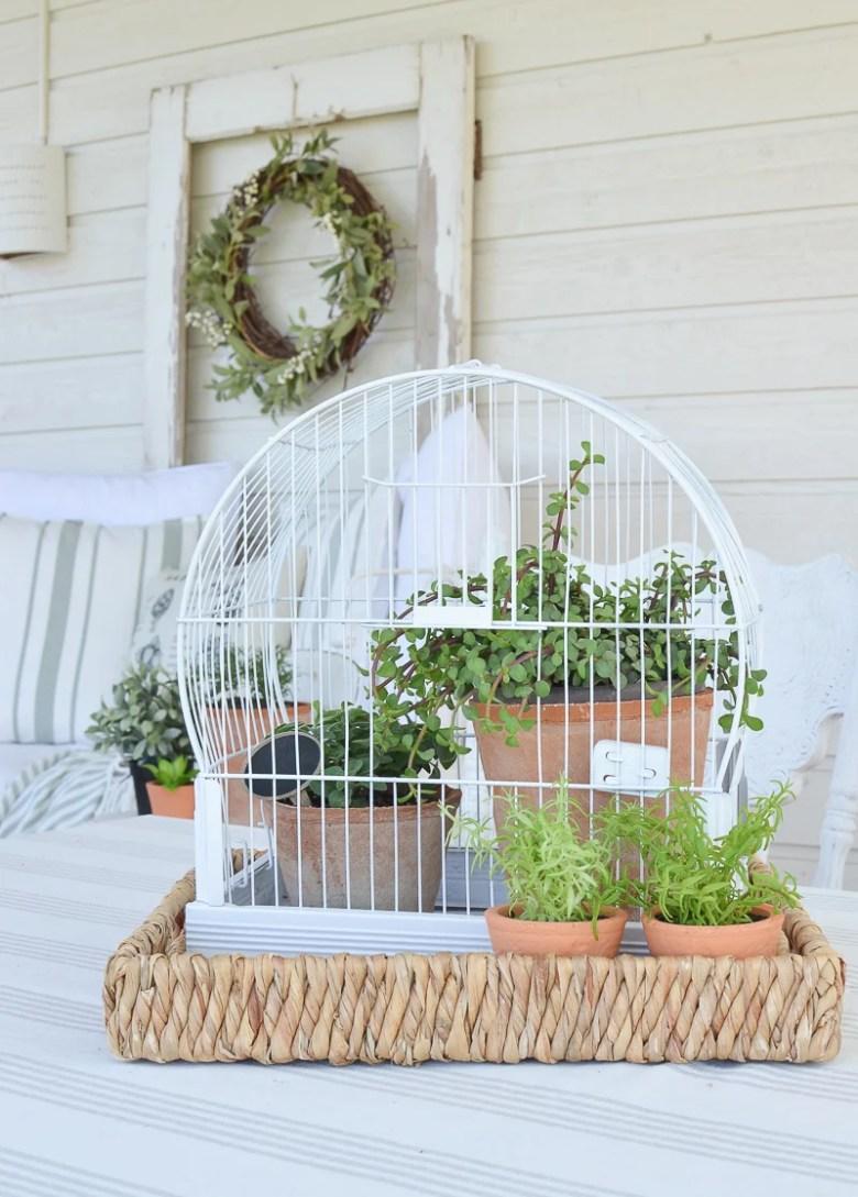 DIY Vintage Bird Cage Planter. Great idea for easy summer garden decor!