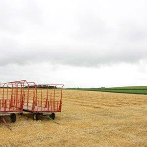 farmscape-SF1
