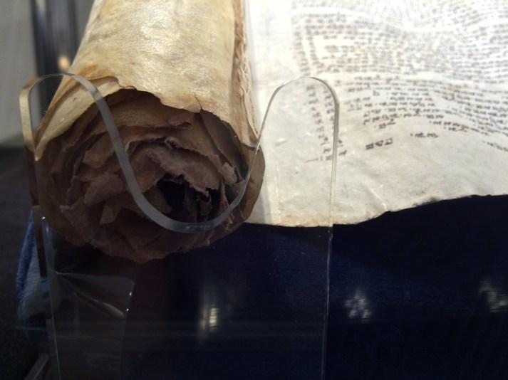 A Samaritan pentateuch scroll.