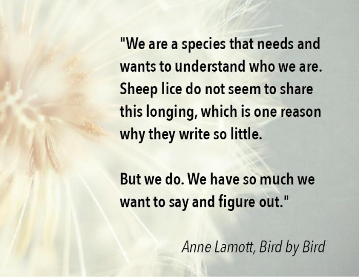 04_mind wanders-Anne Lamott