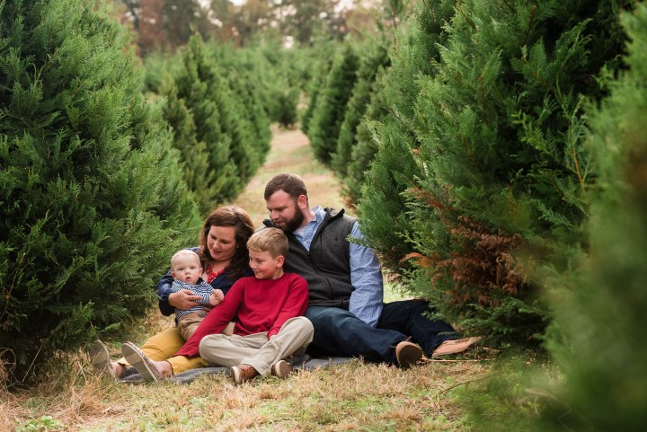 family christmas tree farm session