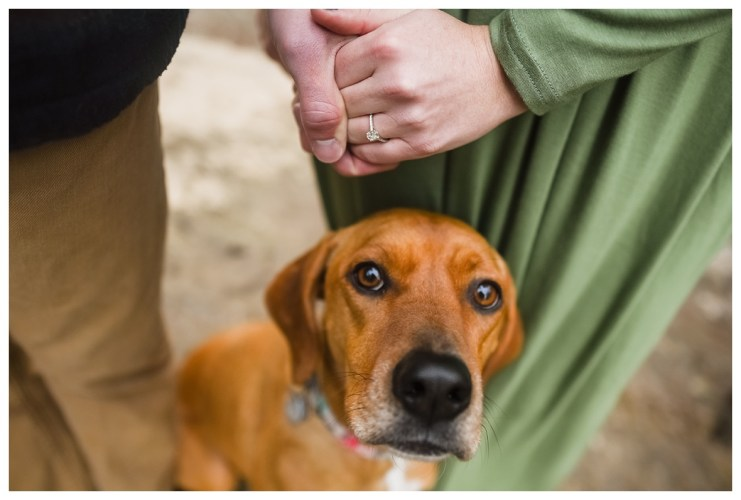 Chattanooga Engagement Session_1777