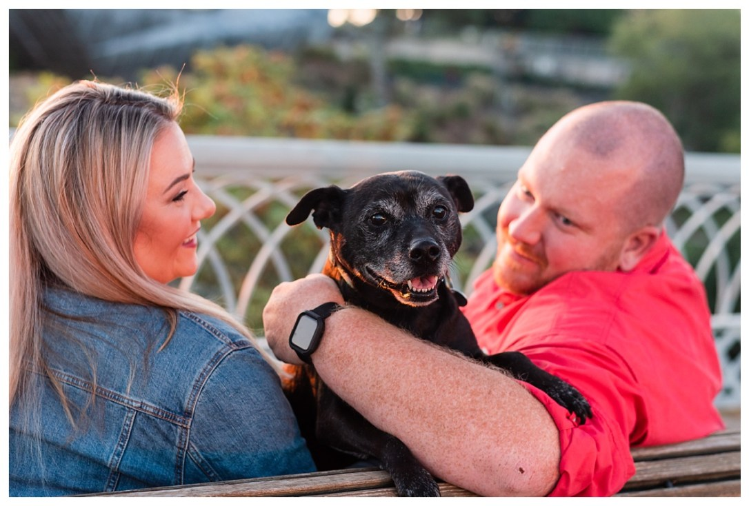 dog in engagement photo at Coolidge Park