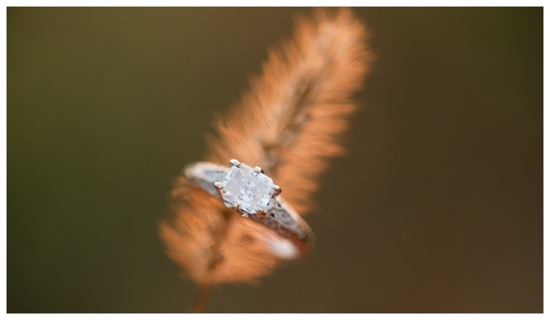 Dreamy Field Engagement Photos and engagement ring