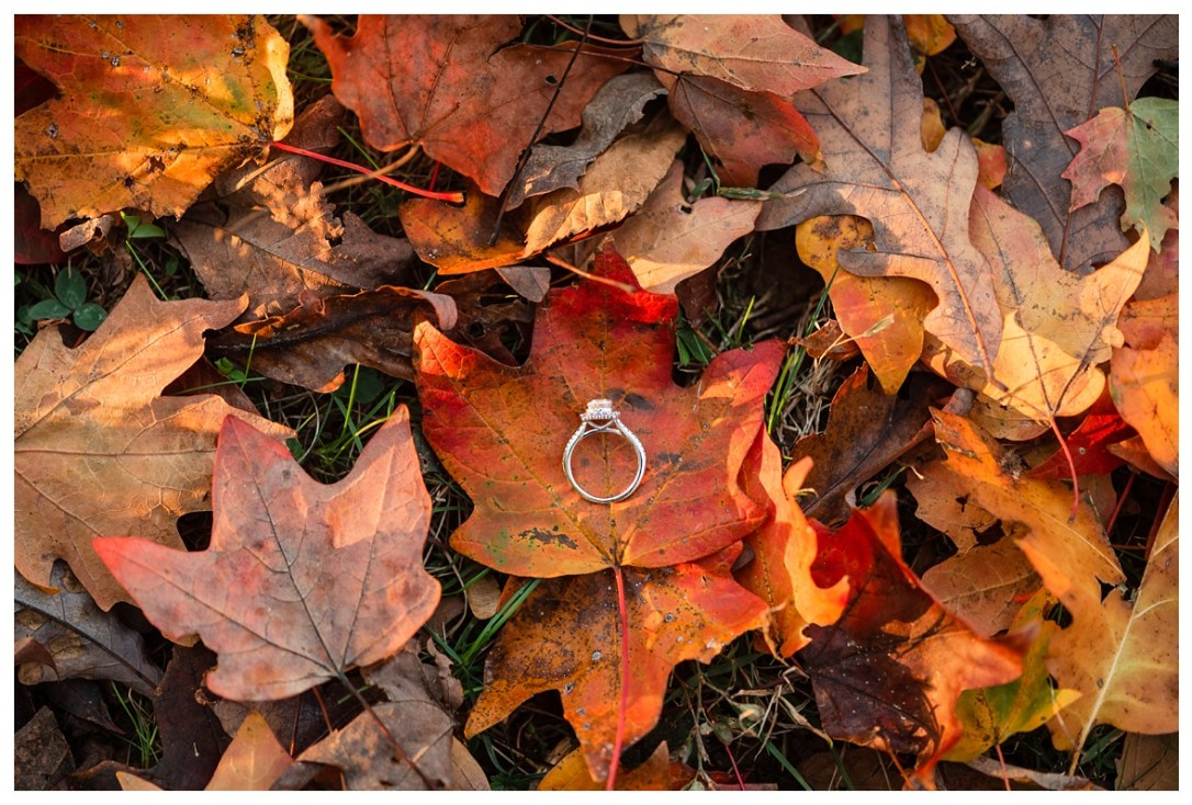 engagement ring in the fall leaves