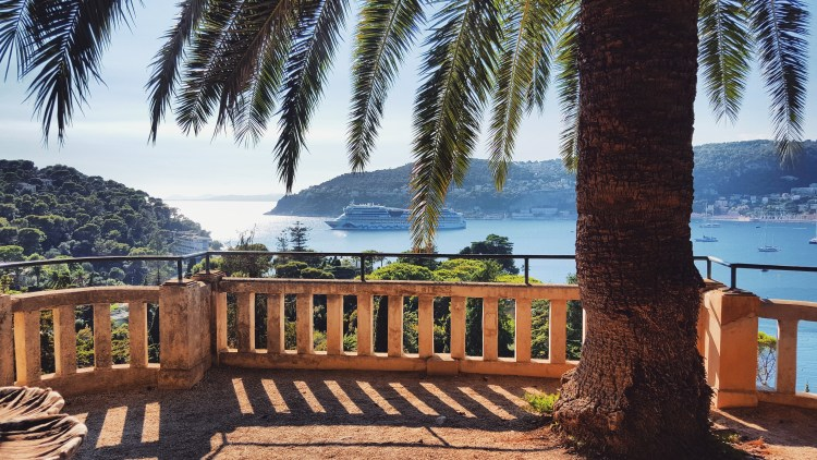 south-of-france-sea-palm-tree
