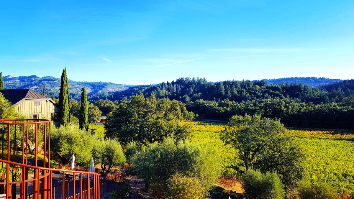 St. Helena Getaway Guide: A Weekend In Wine Country
