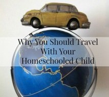Why You Should Travel With Your Home-schooled Child