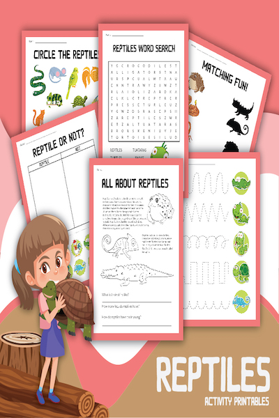 Reptiles for Kids: Small Scaly Creatures to Study