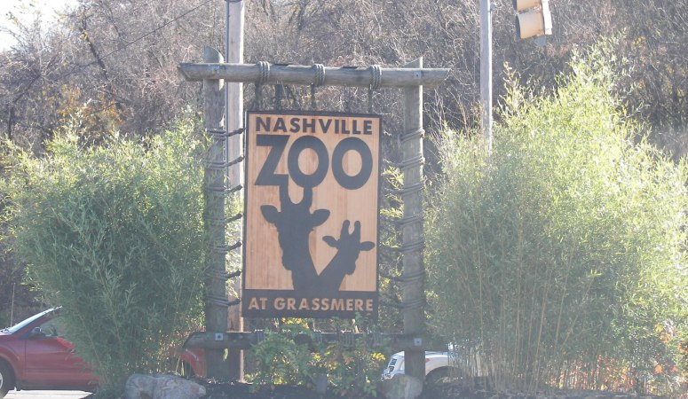 Nashville Zoo: Our First Day of Staycation