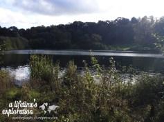 Panshanger, countryside, nature, Hertfordshire, walking