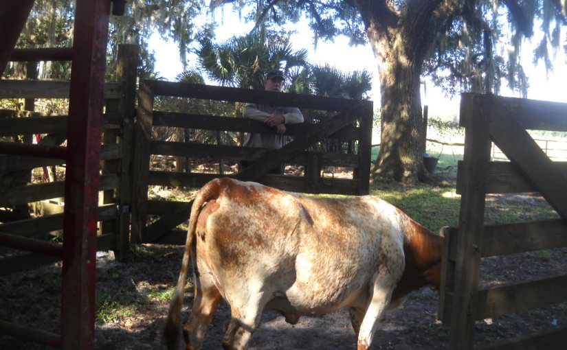 Our Fall Roundup At The Park-