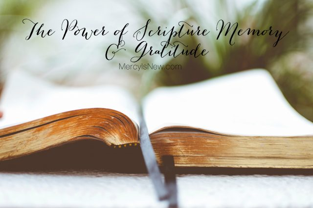 The Power of Scripture Memory & Gratitude | His Mercy is New