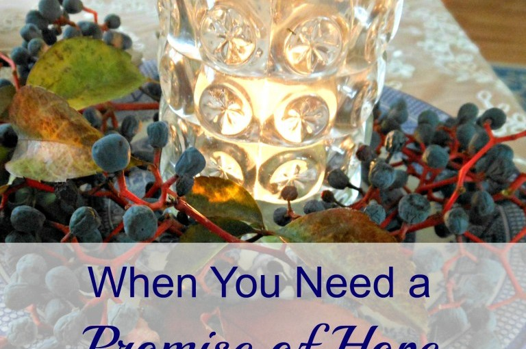 When You Need A Promise Of Hope /Faith Spilling Over (Re-post)