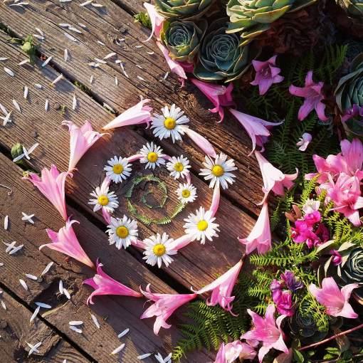 Pink lady spiral