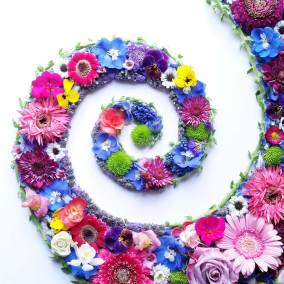 Garden Burst Spiral