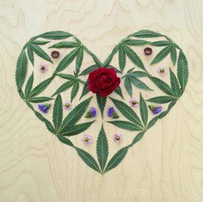 Mary Jane Heart