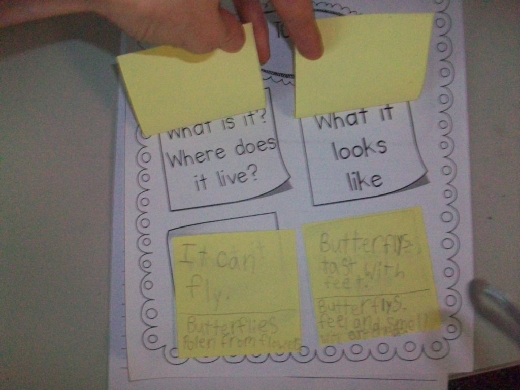 Research Writing First Grade Style