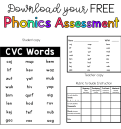 Phonics Assessments - Sarah's Teaching Snippets [ 1024 x 994 Pixel ]