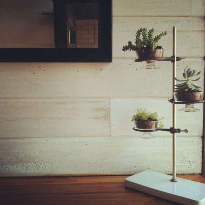 Whitewashing Wood Paneling For A Natural Modern Look At