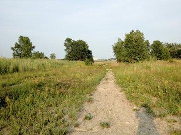 Blazing a hidden trail...