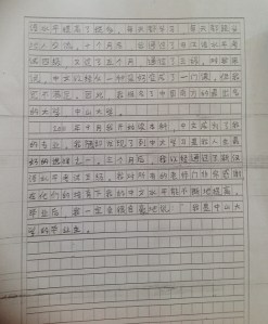 Chinese essay for a competition