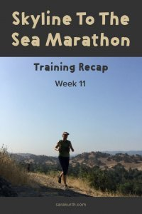 skyline to the sea training week 11