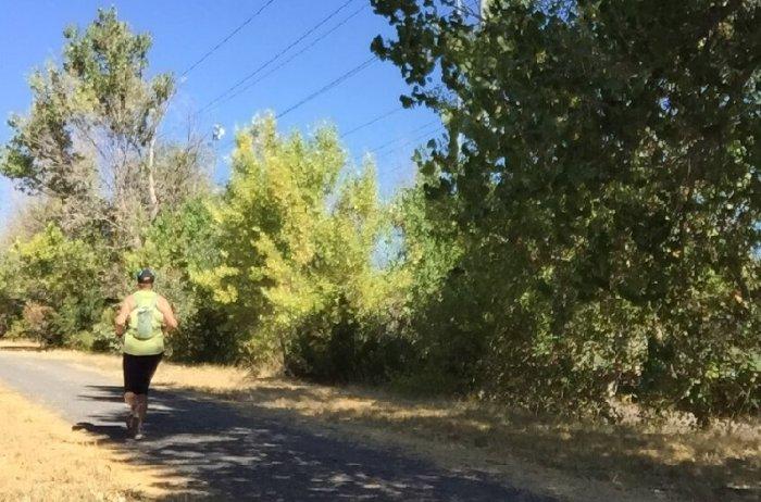 skyline marathon training 16