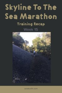 Skyline Marathon Training week 15
